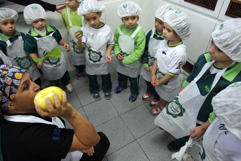 Sesi no Paraná lança projeto de educação nutricional infantil nas  #694630 6000 4000